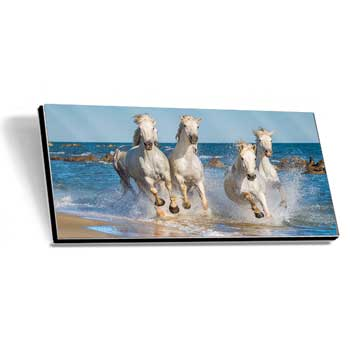 Alu-Dibond Gallery Print high gloss Panorama