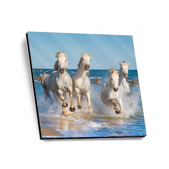 Alu-Dibond Gallery Print high gloss Quadrate